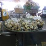 Huevos de Cordoniz