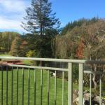 Puhoi Valley Cafe and Cheese Store