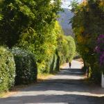 Fabulous Garden Route