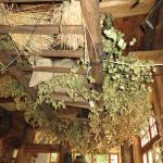La déco de houblon du restaurant