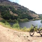 Napa Cycle Sport - Day Rentals