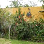 Photo de Yellow Guest House