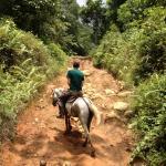 Horseback riding to Rara Avis