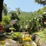 Foto de Coco Palace Resort