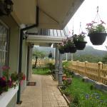 Foto de Misty Hills Holiday Cottage