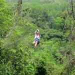 Ziplining over the tree canopy!