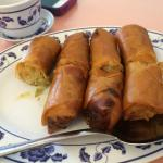 tainted Old Greasy Overcooked Egg Rolls