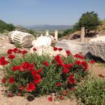 Efesus!