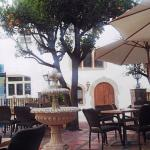 Terraza bar - restaurante
