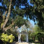 Trengwainton Garden Foto