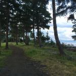 Area trail