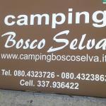 Villaggio Camping Bosco Selva Photo