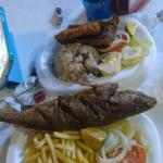 Fish Fillet and Whole Sea Bass