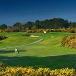 Galway GC