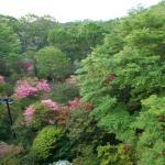 Photo of Villa Nasu