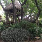 Casinha de madeira sobre a árvore para crianças
