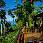 Photo de Bosque del Cabo Rainforest Lodge