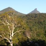 View 1 of Mt Warning