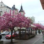 Photo of Staroslovanska Kuchyne