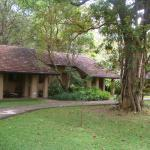 Foto de Sigiriya Village Hotel