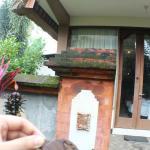 Foto de Beji Ubud Resort
