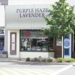 The Purple Haze Lavender store downtown