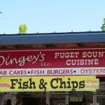 Dingey's