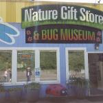The front of the Bug Museum