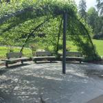 Rosenpavillion im Park.