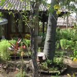 Photo de Villa Bulan Madu