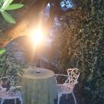 aperitivo sotto l'ulivo