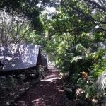 Mexico Verde Resort de Aventura