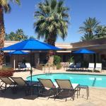 Pura Vida Palm Springs Foto
