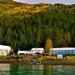 Orca Lodge Fall