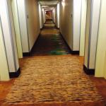 Foto de Hampton Inn & Suites by Hilton,  Bluffton-Sun City