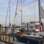 Boat week at the Yacht Harbor