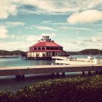 Photo of Marina at Yacht Haven Grande