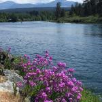 Taylor Arm Provincial Park Foto
