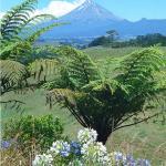 7572 ft Mount Taranaki and its lush dairyland.   Photo © Kevin W. Smith fineartamerica.com