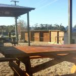 BBQ and Picnic Area