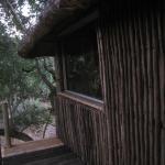 Foto de Marc's Treehouse Lodge
