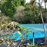 Foto de Puri Kelapa Garden Cottages