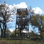 the tower lookout