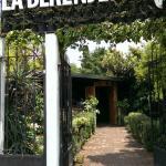 Bild från La Berenjena