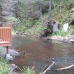 Foto de Alaska Creekside Cabins