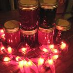 Sample our Jellies - Sandhill Plum. Chokecherry, or Hot Pepper.