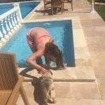 Beatiful pool area and their cute pooch