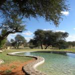 Foto de Zebra Kalahari Lodge
