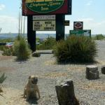 We are here...ELEPHANT BUTTE INN & SPA!