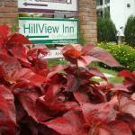 Foto de Hillview Inn